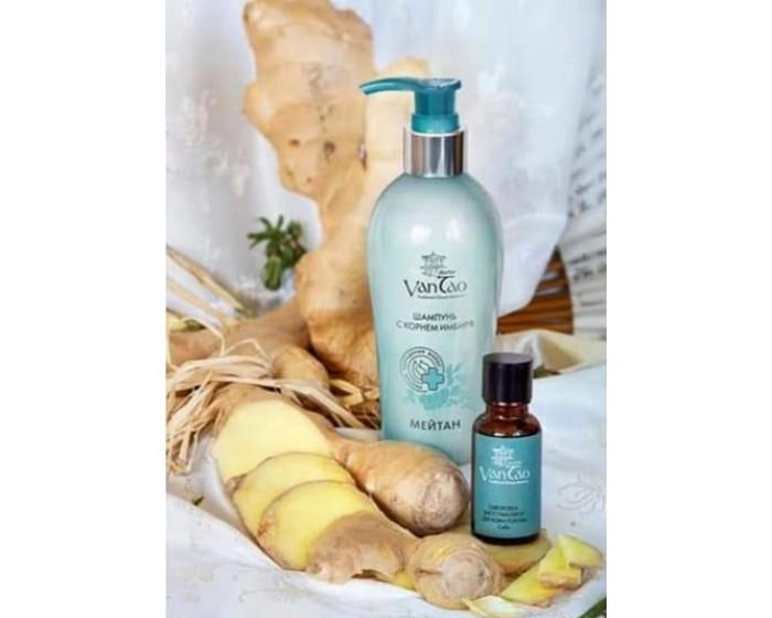 Šampūnas su imbiero šaknimi (nuo plaukų slinkimo) 200 ml. (konsultant. tanai: 11,35)